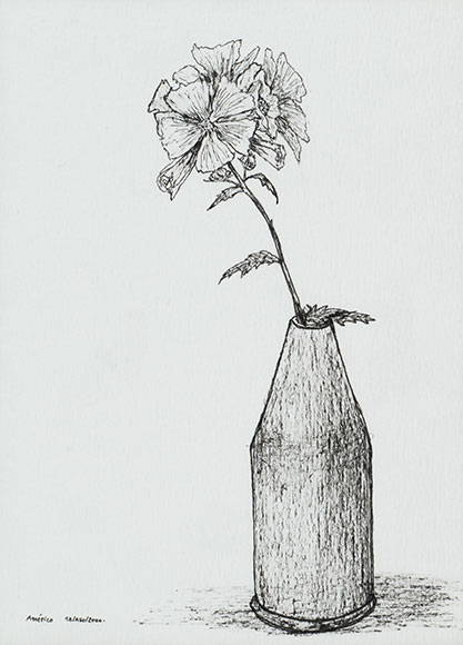 Common mallow, Malva sylvestris (2000) - Ink on paper - 15.8x11.4 cm