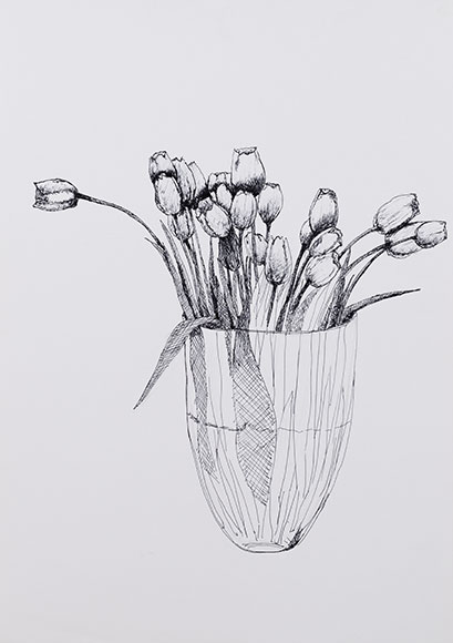 Tulips, Tulipa liniifolia (2001) - Ink on paper - 42x30 cm